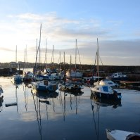 Scotland, North Berwick - Harbour
